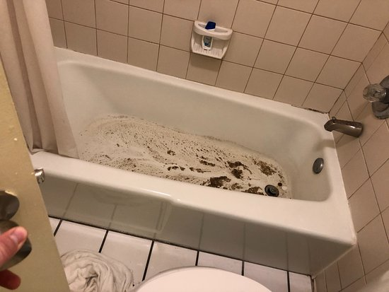 Days Inn by Wyndham Melbourne: poop left in tub after water drained