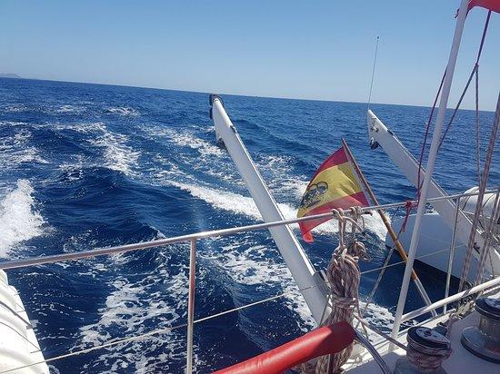MAXICAT catamaran : 20180323_135055_large.jpg