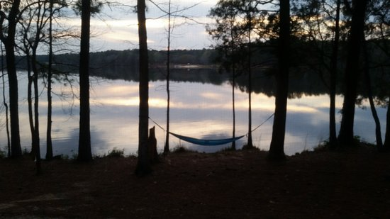 Cheraw, Güney Carolina: Perfect spot for the hammock