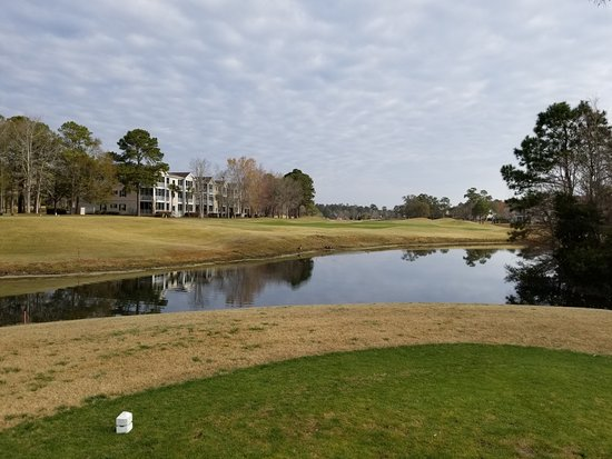 Sea Trail Golf Resort & Conference Center: A tee box
