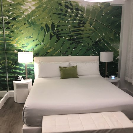 President Hotel Miami Beach Reviews