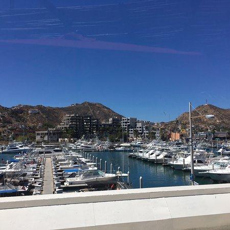 photo0 jpg picture of marina fiesta resort spa cabo san lucas rh tripadvisor com