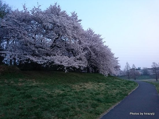 Omiya Daini Park