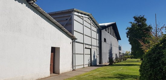 Talca, Chile: Casa Donoso Winery