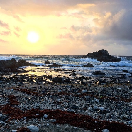 Aruba Sunrise Tours: Highlights from our tour. Loved it!