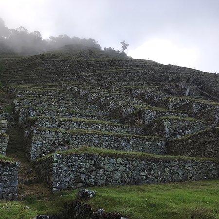 Cusco Explorers: photo2.jpg