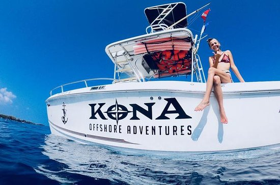 Kona Dolphin Experience and Reef...