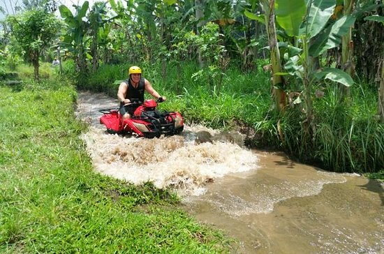 ATV Quad and Tanah Lot Temple Tour