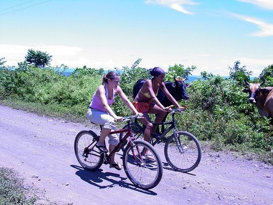 Hacienda Merida: Biking