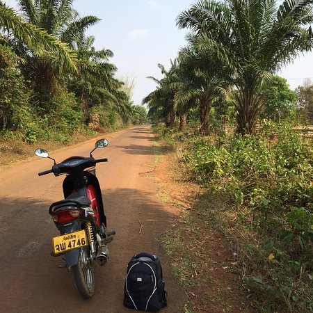 Miss Noy Motorbike: photo3.jpg