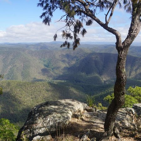 Guy Fawkes River National Park