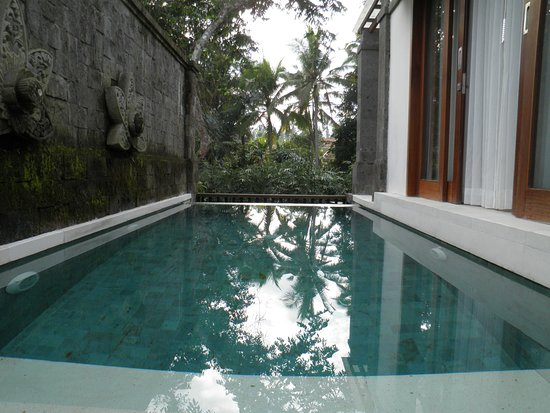 Very comfortable plunge pool!