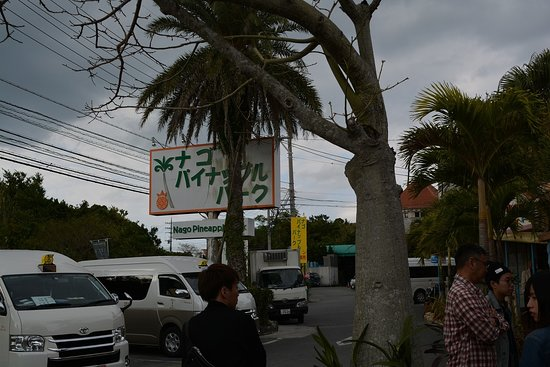 Nago Pineapple Park Photo
