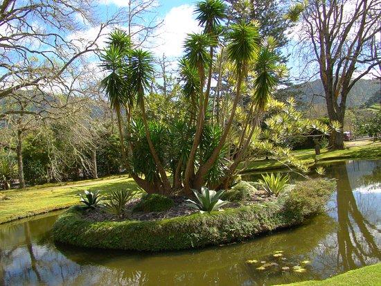 Parque Terra Nostra: Parque