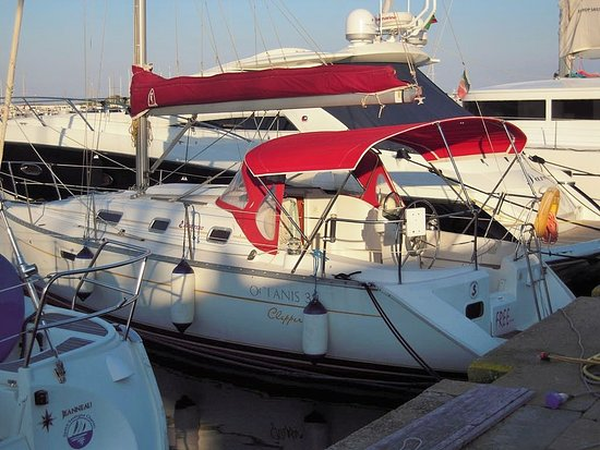 Free Sail Cruise