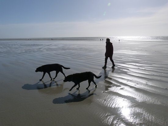 West Wittering Picture