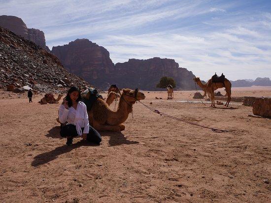 Wadi Rum Nomads - Day Tours: First spot