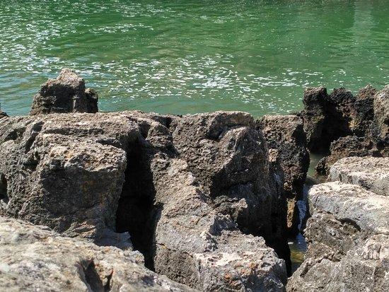 Widoki Cascais