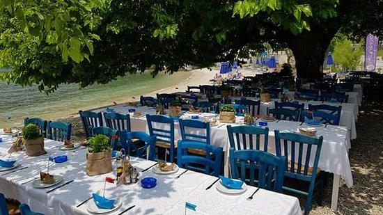 Mouria Fish Tavern Agnontas: Ενα μεσημερι στη μουρια για τσιπουρα με τη παρεα ειχε και βαφτιση ηταν πολυ καλα