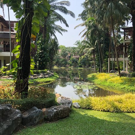 Resort Hotel away from Everything