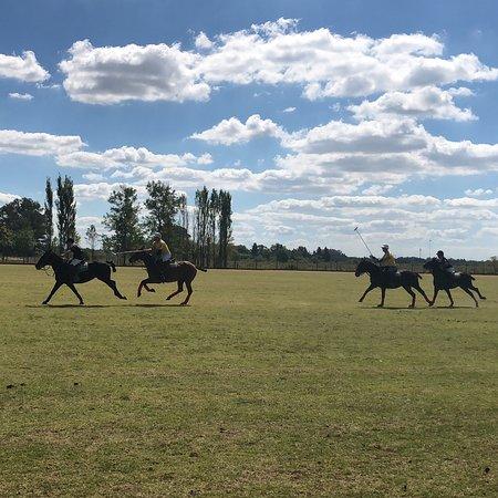 Argentina Polo Day: photo1.jpg