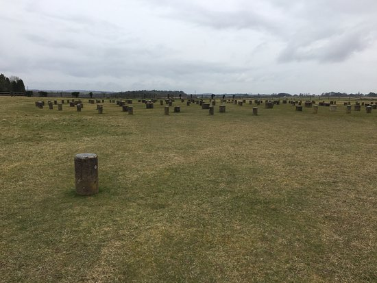 Durrington, UK: woodhenge