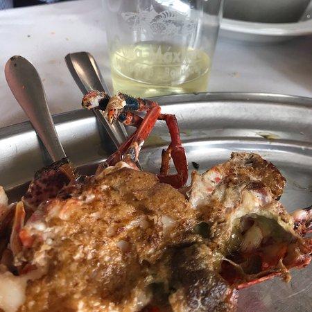 Banugues, Spain: Mariscada a la plancha buenísima. Mejor reservar y en festivos, comer temprano si no quieres esp