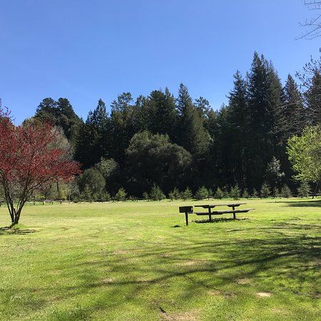 Redwood Regional Park: This is such a beautiful place to go so peaceful. The trees are amazing and the colors so wonder