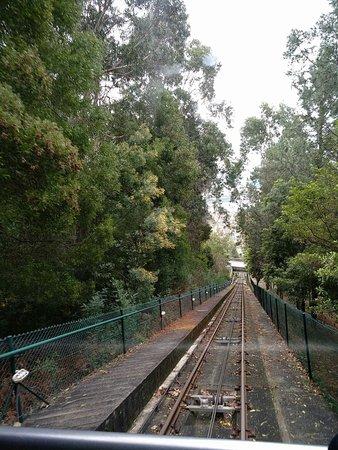 Funicular de Santa Luzia: received_1452509161539045_large.jpg