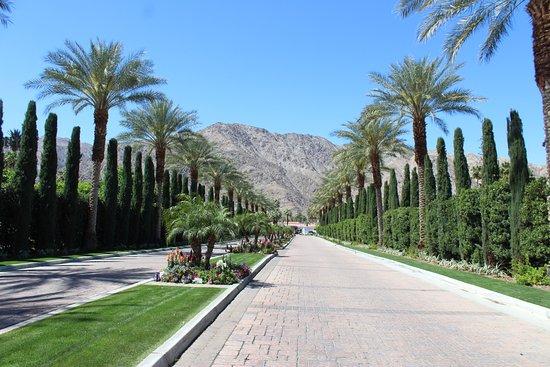 La Quinta Resort & Club, A Waldorf Astoria Resort: Front Driveway into the resort