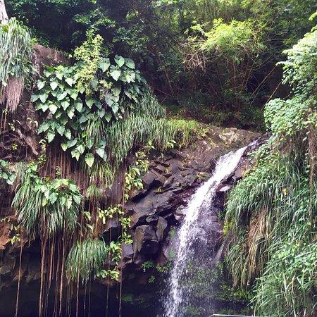 Lower Woburn, Grenada: photo1.jpg