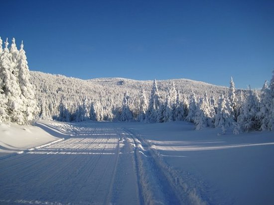 Rent one of our 14 snowmobiles and visit the peaks of Pittsburg.