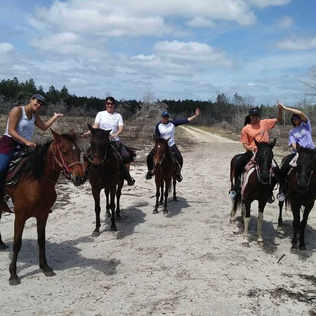 Western Pleasure Riding Les Carriages Santa Rosa Beach 2018 All You Need To Know Before Go With Photos Tripadvisor