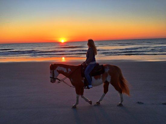 Fernandina Beach, FL: Fabulous ride!