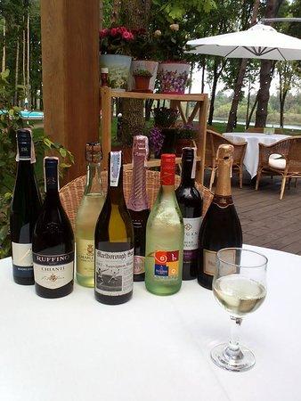 Vyshhorod, Ukraine: лето и вино
