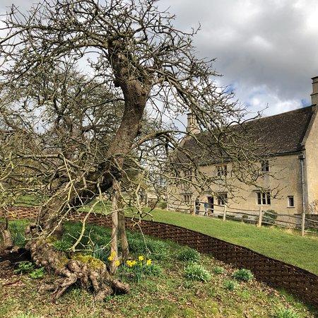 Woolsthorpe Manor: photo0.jpg