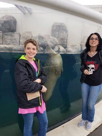 Virginia Aquarium & Marine Science Center: 20180321_122614_large.jpg