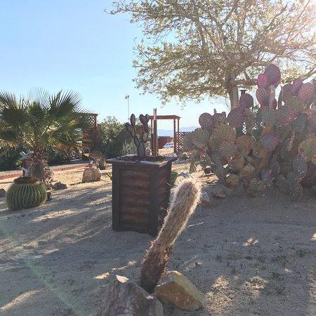 Twentynine Palms, CA: photo1.jpg
