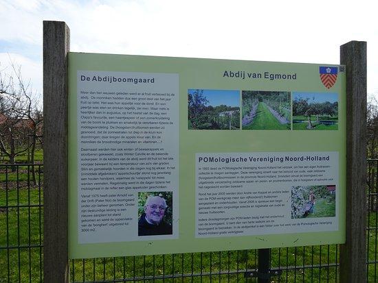 Egmond-Binnen, Hollanda: Abdij van Egmond Binnen;Abdij-museum Benedictushof