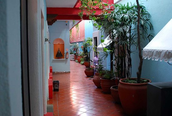Suites del Centro: В отеле