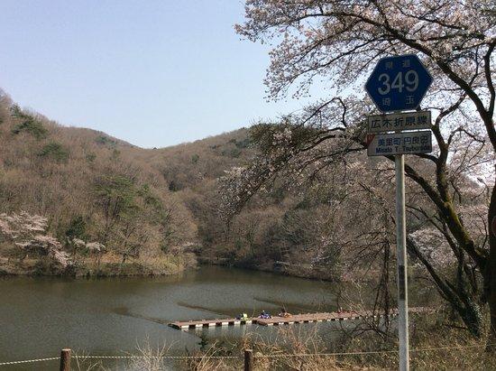 Yorii-machi, Giappone: 円良湖とヘラブナスポット