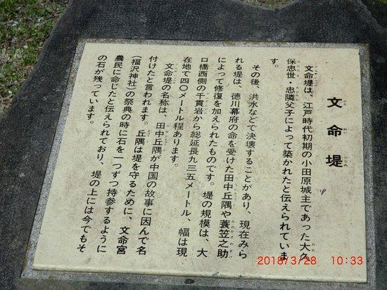 Fukuzawa Shrine Φωτογραφία
