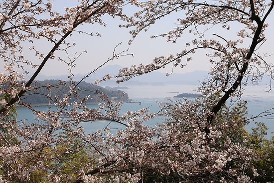 Shofukujiyama Park
