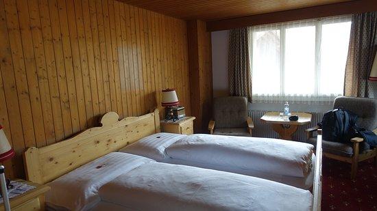Hotel Gletschergarten Image