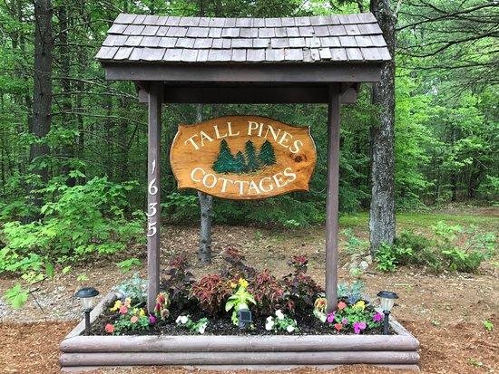 Henniker, Νιού Χάμσαϊρ: welcome to Tall Pines