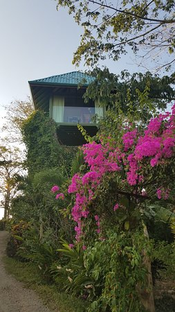 Anamaya Resort & Retreat Center Bild