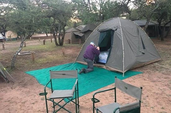 2 day tented Pilanesberg safari from...