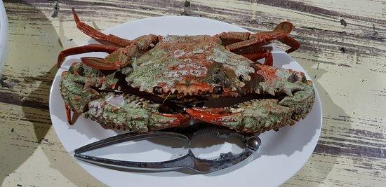 Islas de Gigantes, الفلبين: 1st night dinner - the lonely crab :(