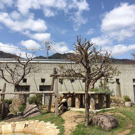 Kobe City Oji Zoo : photo0.jpg