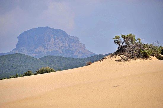 Dune di Piscinas con il Monte Arcuentu